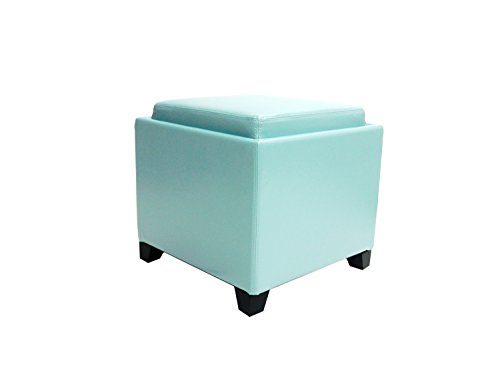 Armen Living Contemporary Storage Ottoman with Tray in Sky Blue
