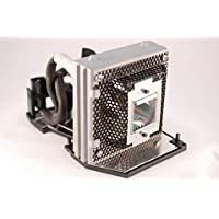 Replacement Lamp Module for Optoma DV10 MovieTime DV10 TX771 Projectors (Includes Lamp and Housing)