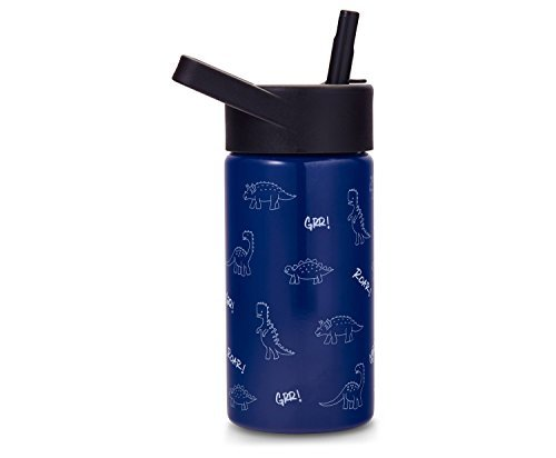 Cheeky Kids Go 14oz Insulated Stainless Steel Water Bottle with Straw Lid - Dark Blue Dinosaur Print