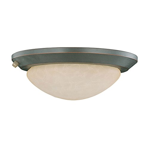Concord Fans Y-260A-S-ORB Lightkit 2 Low Profile Fan Light Kit, Oil Rubbed Bronze (Concord Bowls Glass)