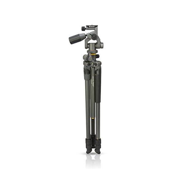 RetinaPix Vanguard Alta Pro 2+ 263 AP Camera Tripod (Black)