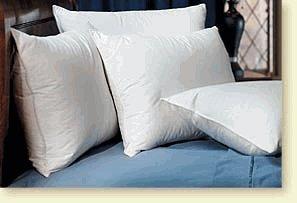 Pacific Coast Down Surround Standard Complete Pillow Set (4 Standard Pillows)
