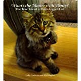 img - for What's the Matter with Henry? The True Tale of a Three-legged Cat book / textbook / text book