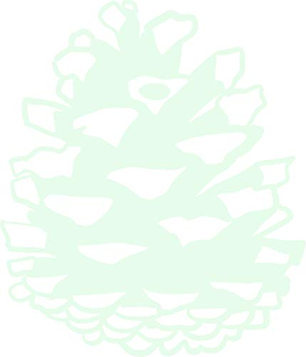 (hBARSCI Pinecone Vinyl Decal - 5 Inches - for Cars, Trucks, Windows, Laptops, Tablets, Outdoor-Grade 6mil Thick Vinyl - Glow in The Dark)