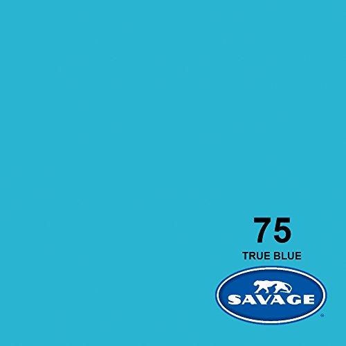 Savage Seamless Background Paper - #75 True Blue (107'' x 36') by Savage (Image #1)