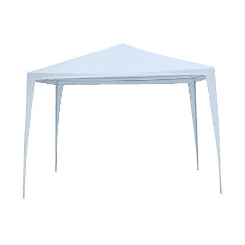 Tenozek 10' X 10' Canopy Tent, Portable Lightweight Gazebo Weddin Party Tent for BBQ Fishing Beach Garden Outdoor White (10 x 10 Gazebo)