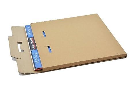 50 CAJAS EMBALAJE Y ENVIO PARA 1 A 3 DISCOS DE VINILO LP: Amazon.es: Electrónica