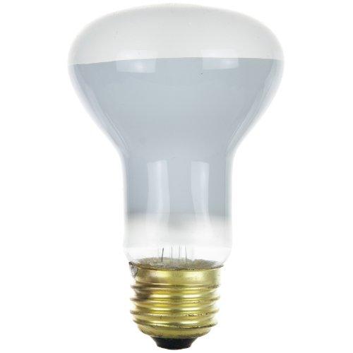 (Sunlite  25262-SU 45R20/HAL/ECO/FL 45-watt Halogen R20 Reflector Bulb)