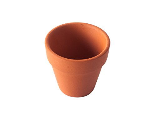 Pennington Mini Flower Pots 2