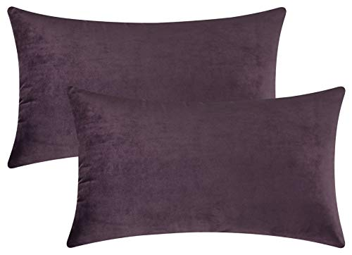 Mixhug Set of 2 Cozy Velvet Rectangle Decorative Throw Pillow Covers for Couch and Bed, Deep Plum, 12 x 20 Inches