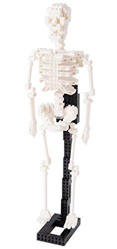 Nanoblocks Nbm014 Nb  Human Skeleton Building Kit by Nanoblocks