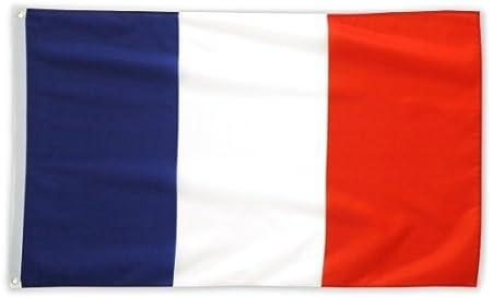 Bandera de Francia (150 x 90 cm): Amazon.es: Hogar