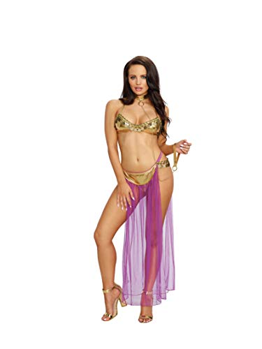 Dreamgirl Women's Harem Slave Set, Multi, One -