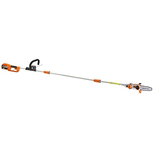 LawnMaster CLPS4008 0801 Pole Saw with 4.0 Battery and Fast Charger, 40V by LawnMaster
