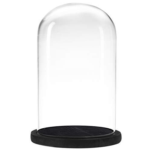MyGift Decorative Clear Glass Cloche Bell Jar Display Case with Black Rustic Wood Base, 10 x 7 Inches