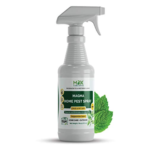 MDXconcepts Organic Home Pest Control Spray - Kills & Repels, Ants, Roaches, Spiders, and Other Pests Guaranteed - All Natural Insect Killer - Child & Pet Safe - Indoor/Outdoor Spray - 16oz (Best Natural Black Fly Repellent)