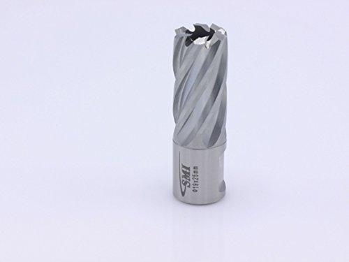 HSS Kernbohrer 19 mm Drm. Schnitttiefe 25 mm Aufnahme 19 mm Weldonschaft