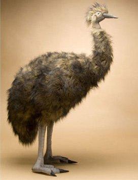 Hansa True-to-Life Emu from Hansa
