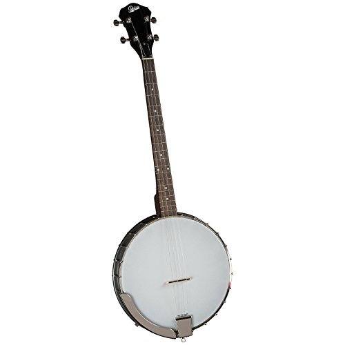 Rover RB-20T Resonator Tenor Banjo ()