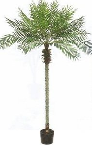 One 8 Foot Artificial Phoenix Palm Tree Potted Plant
