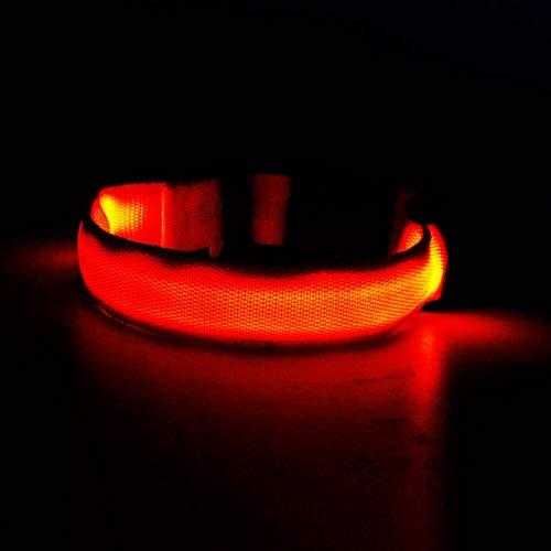 Nylon Pet Dog Collar Night Safety LED Light-up...