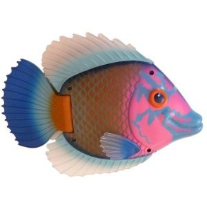 (Swim Ways Rainbow Reef Swimming Fish Pool Toy Blue & Pink)