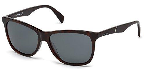 Sunglasses Diesel DL 222 DL 0222 52N dark havana / - Diesel Shades