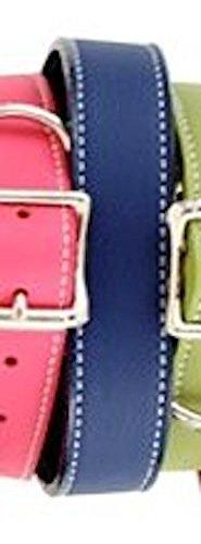 """Auburn Leather Tuscany Pet Dog Collar Round Rolled 20""""-22"""" - Royal Blue"""