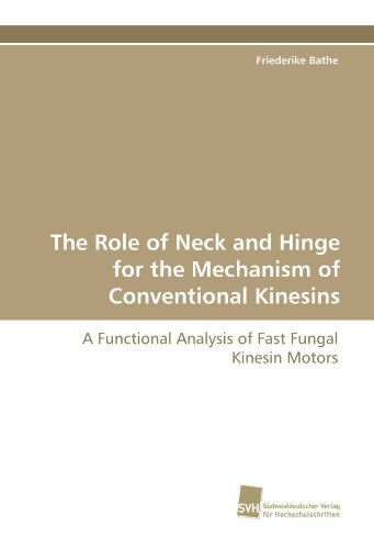 The Role of Neck and Hinge for the Mechanism of Conventional Kinesins: A Functional Analysis of Fast Fungal Kinesin Motors
