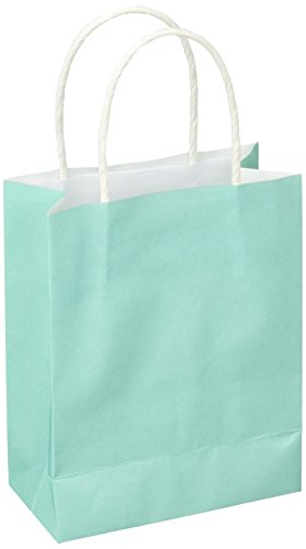 Amscan Kraft Bags | Robins Egg Blue | Party Accessory | 24 Ct.