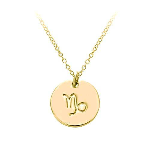 HACOOL 18k Gold Plated 12 Zodiac Sign Tag Constellation Horoscope Astrology Disc Charm Necklace Pendant (Capricorn) (Charm Gold Plated Capricorn)