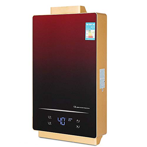 In Liquid Propane Heater Built - VEVOR 12L Liquid Propane Gas Tankless Water Heater 36KW 3.2GPM LPG Touch Screen On Demand Water Heater Indoor LED Display Instant Hot Water Heater With Shower Head Kit (12L/Touch Screen, Propane)