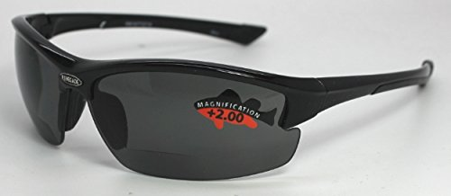 POLARIZED MOTORCYCLIST SUNGLASSES With READERS - Davidson Instruments Harley