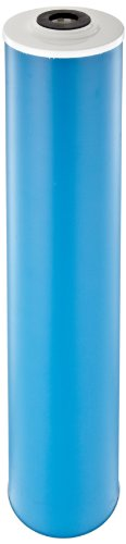 "Pentek GAC-20BB Carbon Filter Cartridge, 20"" x 4-1/2"""