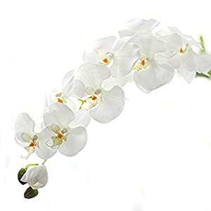 Miracliy 1 Piece Artificial Butterfly Orchid Flower Artificial Flower Plant for Home Decoration, White 90