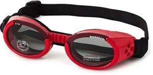 Doggles Dog Goggles ILS LARGE RED SHINY by Doggles, LLC
