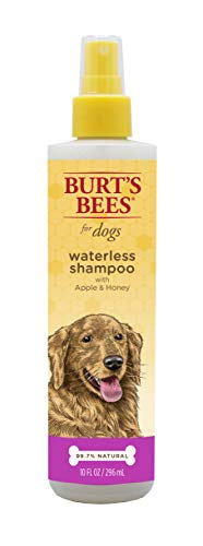 Burt's Bees for Dogs Natural Waterless Shampoo Spray with Apple and Honey | Puppy and Dog Spray, 10 Ounces - 3 Pack