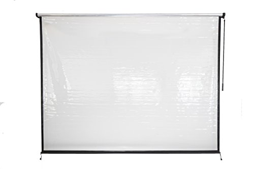 Coolaroo Exterior All Weather Vinyl Roller Shade, 6' x 6' , Clear by Coolaroo