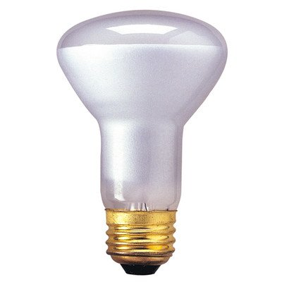 R20 Incandescent Indoor Reflector Bulb for Flood [Set of 10] Wattage: 30W