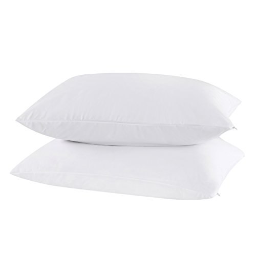 Dreamaker 100% Waterproof Bed Bug & Dust Mite Control Pillow Protector Zippered Pillowcase Cover Sham Set of 2 (Queen 20