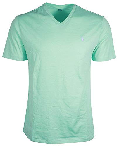 Polo Ralph Lauren Mens Classic Fit V-Neck T-Shirt (Medium, Seafoam Green/Lavender Pony)