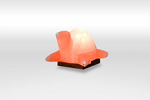 Turtle Salt (100% Natual Authentic Himalayan Crystal Rock Salt Lamp - TURTLE)