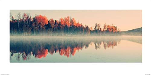 Art Group The Andreas Stridsberg (Forest Reflections) -Art Print 50 X 100cm, Paper, Multicoloured, 50 x 100 x 1.3 cm The Art Group PPR41118