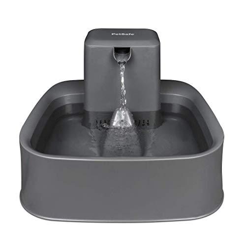 PetSafe Drinkwell Trinkbrunnen, Einstellbarer Durchfluss, Leicht zu reinigen, Springbrunnen für Haustiere