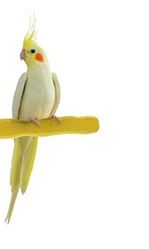 (Sweet Feet and Beak Comfort Grip Safety Perch for Birds Patented Perch Keeps Nails and Beak in Top Condition - Safe and Non-Toxic, for Cages - Small/Yellow)
