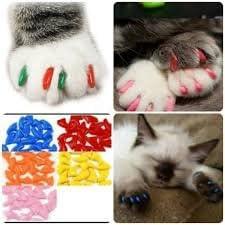 Funda de Uñas Anti Arañazos para Gato Mascota Talla M (rojo): Amazon.es: Hogar