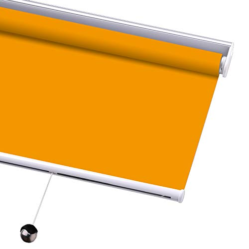 Light Filtering Orange Blinds (PASSENGER PIGEON Blackout Window Shades, Premium Free-Stop Cordless UV Protection Custom Roller Blinds, 69