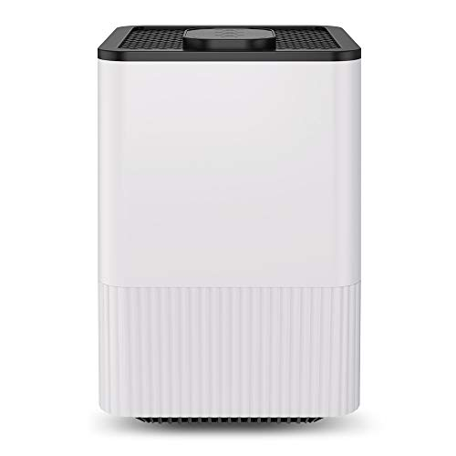 BOYON A8 Air Purifier