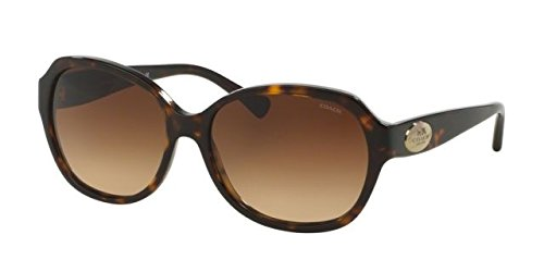 COACH Women's 0HC8150 Tortoise/Brown Gradient - In Price Coach Usa