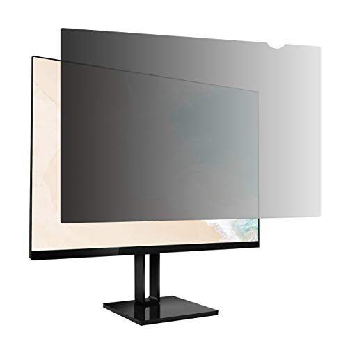 AmazonBasics Privacy Screen Filter for 17.3 Inch 16:9 Widescreen Monitor